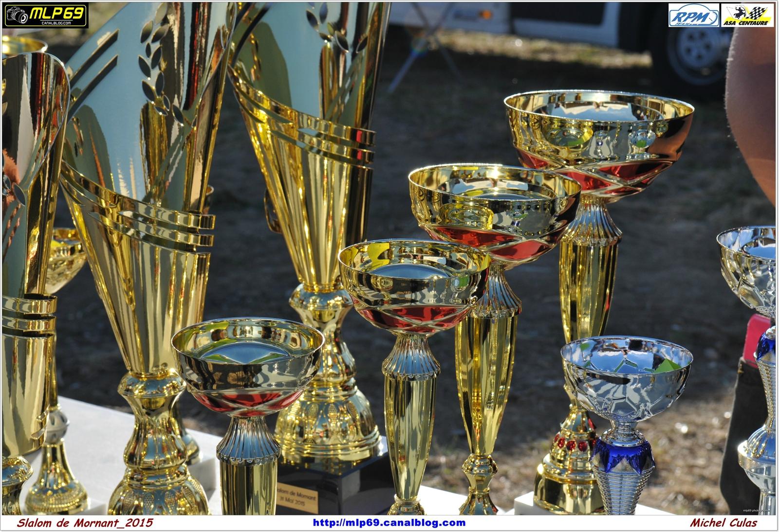 Coupes Mornant 2015